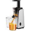 ΑΠΟΧΥΜΩΤΗΣ ESPERANZA SLOW JUICER MIRTILLO EKJ007